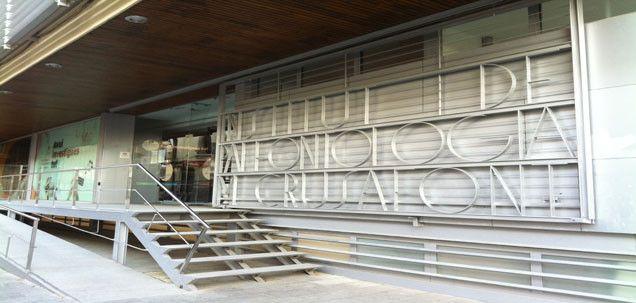 Museu de l'institut català de paleontologia miquel crusafont - centre de referència de recerca, conservació i difusió de la paleontologia de vertebrats i humana a Catalunya