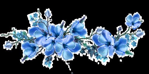 Pin By Mukremin Sahin On Denenecek Projeler Watercolor Flowers Flower Painting Flower Illustration