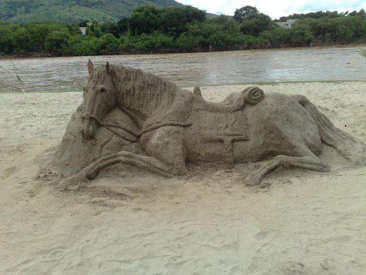 sand horse on the beach
