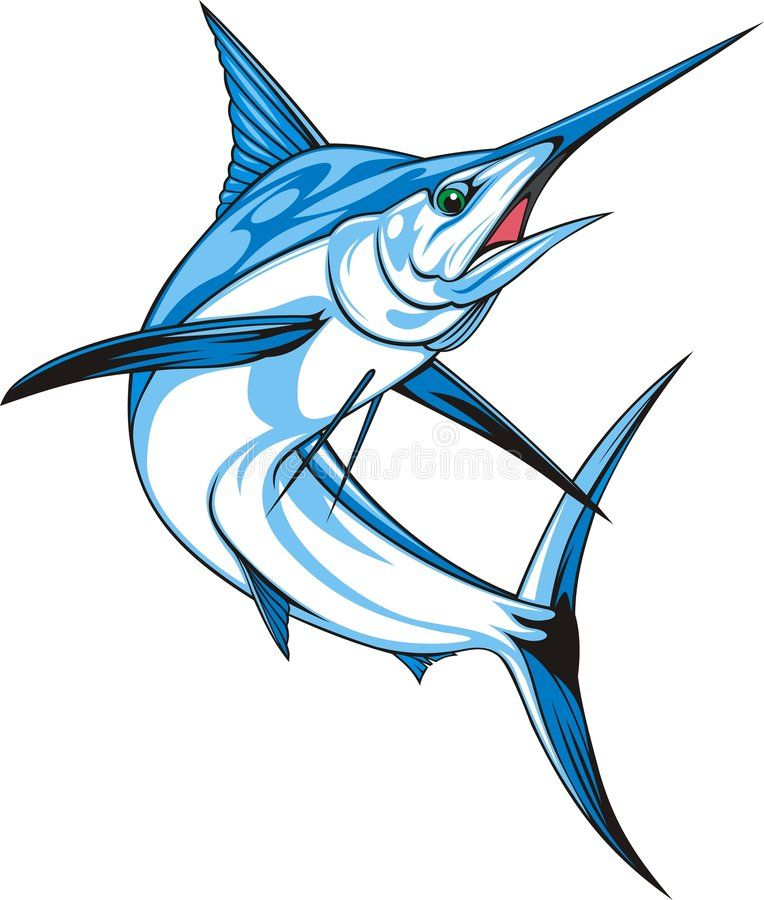 Marlin Natural Blue Marlin On The White Background Aff Blue Natural Marlin Background White Ad Blue Marlin Fish Drawings Blue Marlin Fish