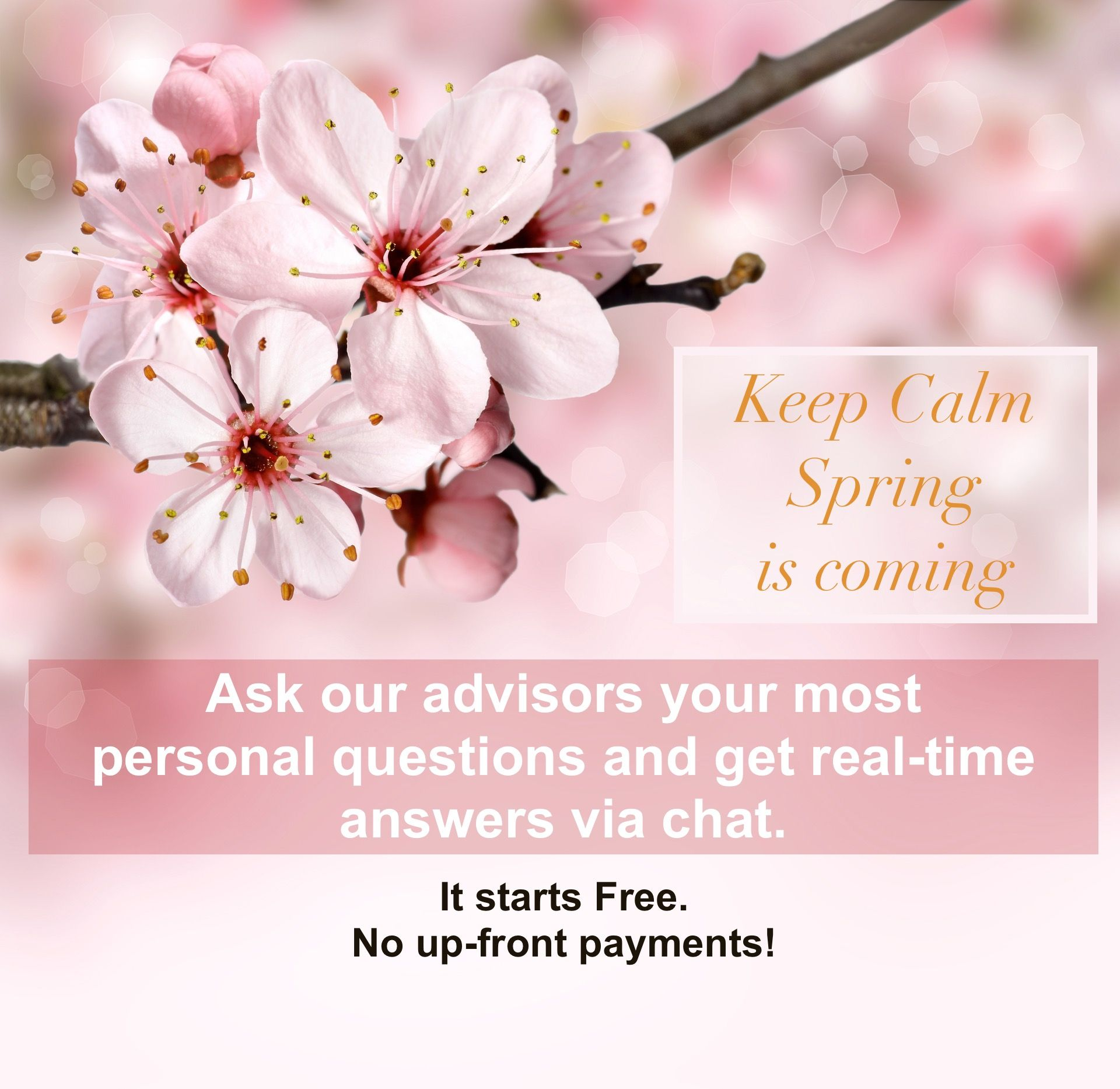 Go to http://www.askpsy.com  💖 Chat starts Free! 💖 Two options to accept Charging! 💖 Private/Anonymous!  #answers #justaskit #happyspring #spring #pink #love #freereadings #quotes #happiness