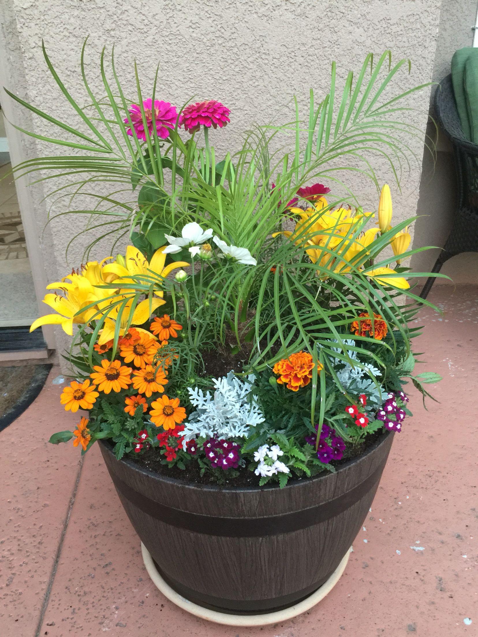 Costco Pot W Perinial Flowers Planter Bo Planters Herb Garden Compost
