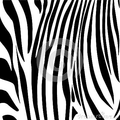 Zebra Stripes Pattern Download From Over 42 Million High Quality