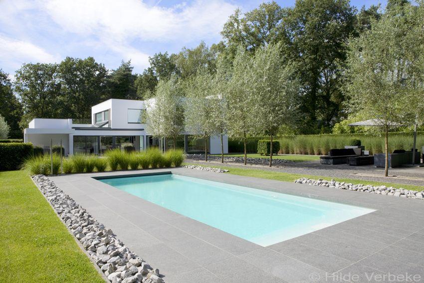 Buitenzwembad in minimalistische tuin starline zwembad pools