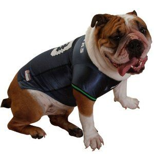 5320cfce325 Seattle Seahawks Dog Jersey ♥♥ Get it at BuyDogSweaters.com ...