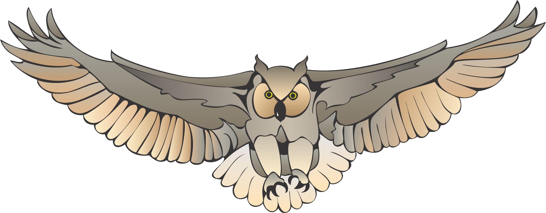 flying owl clipart - clipart kid | owl cartoon, owl images