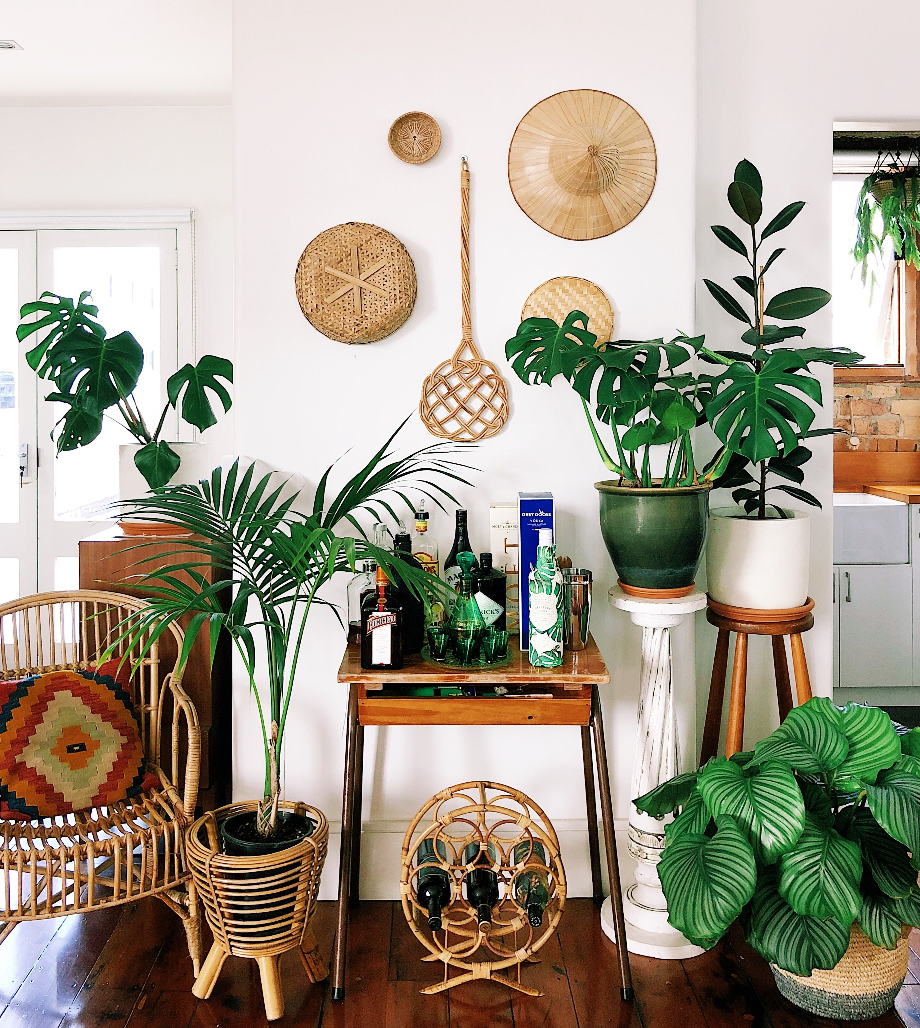 Big Plants For Living Room This New Zealand Home In A 1920s Converted Factory Is A