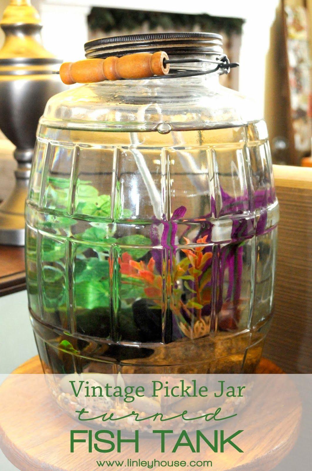 Vintage pickle jar turned fish tank new home pinterest