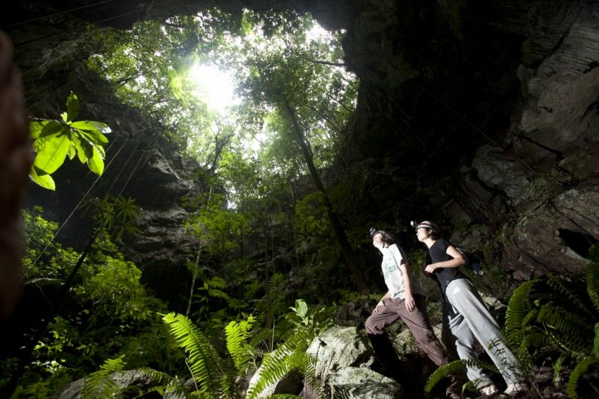 Belize Treehouse Photo Gallery Caves Branch Jungle Lodge Belize Vacations Belize Tours Belize Resorts