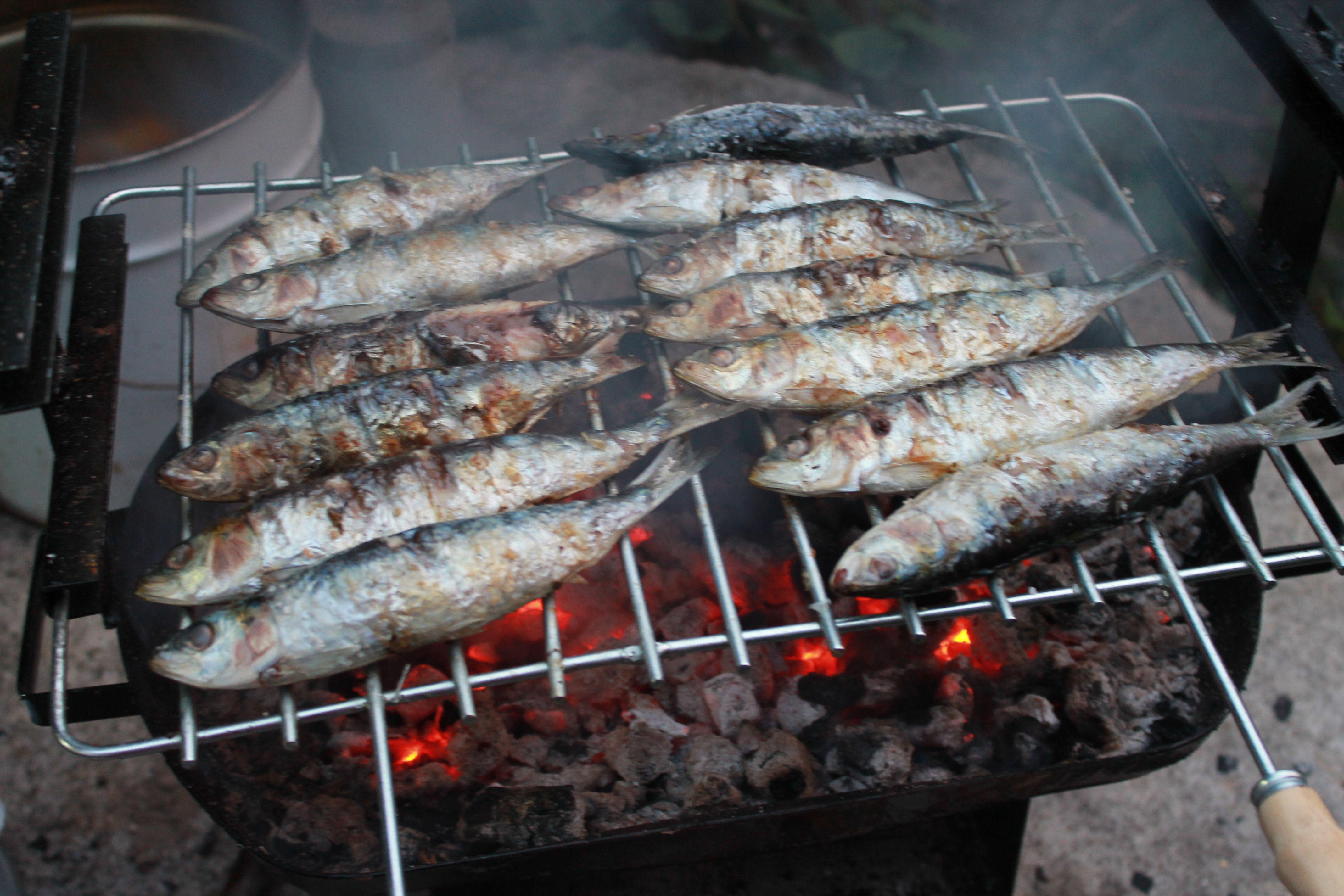 sardinhas grelhadas by B.Reckelbus