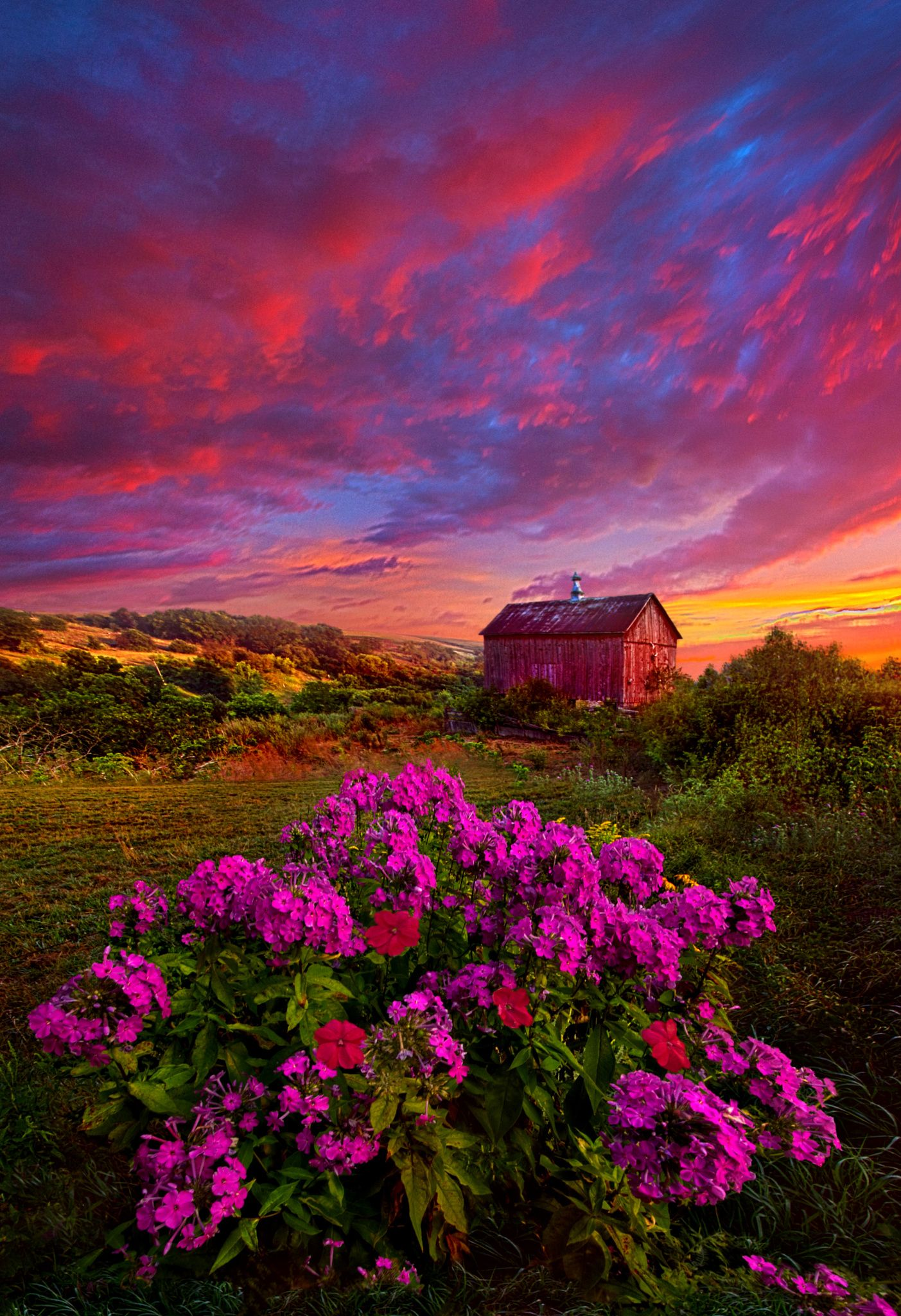 Beautiful Nature Landscape Photography: Sunrise Flower Meadow Barn