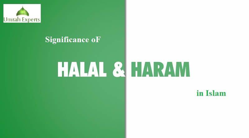 Søker Kvinne Haram