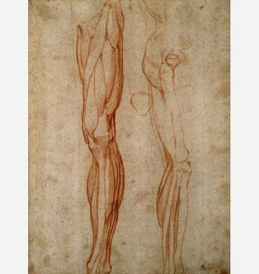 Anatomical drawings by Leonardo da Vinci (circa 1510).   More da Vinci's anatomical sketches:  pinterest.com/pin/287386019946407968/