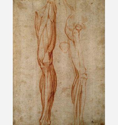 Anatomical drawings by Leonardo da Vinci (circa 1510).   More da Vinci's anatomical sketches:  pinterest.com/pin/287386019946407968/