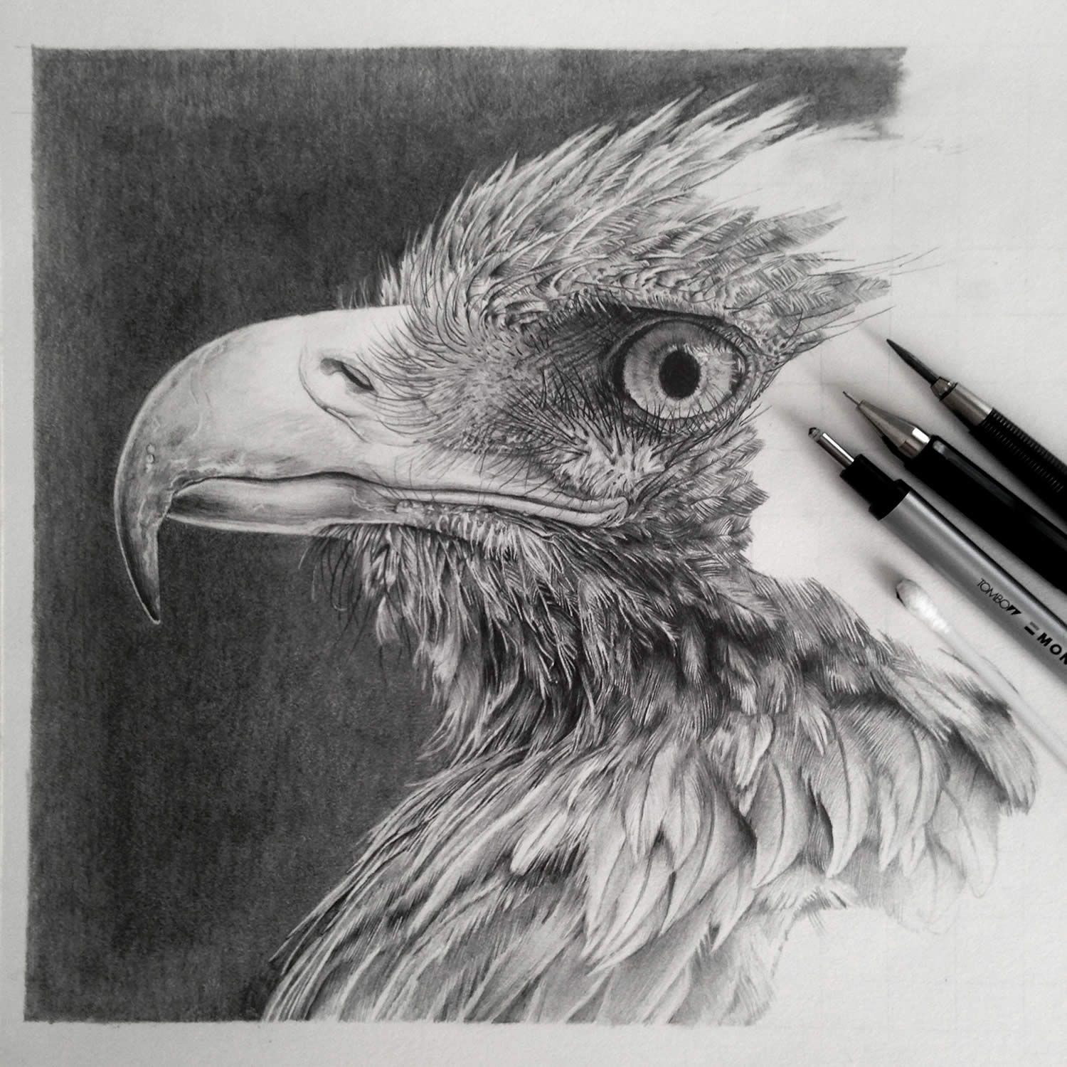 Pencil Drawings By An Artist Who Is Addicted To Detail Eagle - Amazingly realistic pencil drawings monica lee