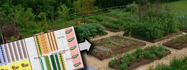 Garden Bed Planner. This plans EVERYTHING from first and last frost, seed starting, planting, harvest dates, crop rotation, companion planting.... ect. Get 30 day trial free. Subscription does not auto start after trial period.
