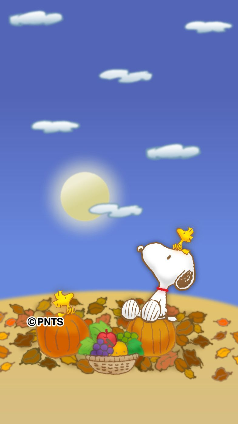 Pin By Katrina Van Tassel On Snoopy With Images Snoopy
