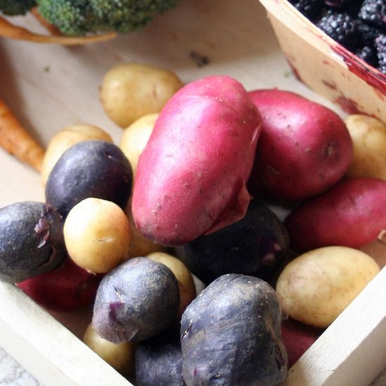 10 Must-Have Crops For a Foodie's Garden: Heirloom and Fingerling Potatoes