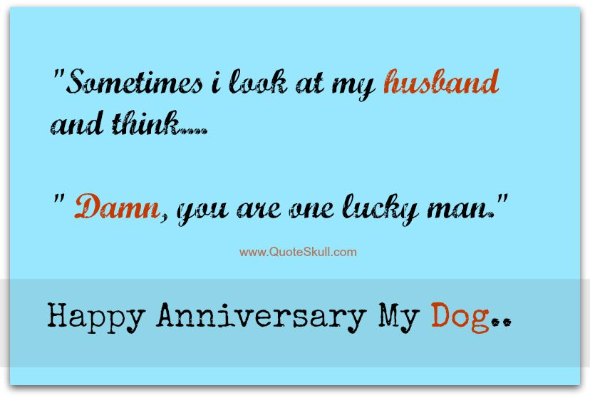 Happy Anniversary Quotes For Husband Funny Happy Anniversary