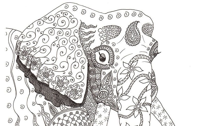 Difficult Coloring Pages Elephants See the category to