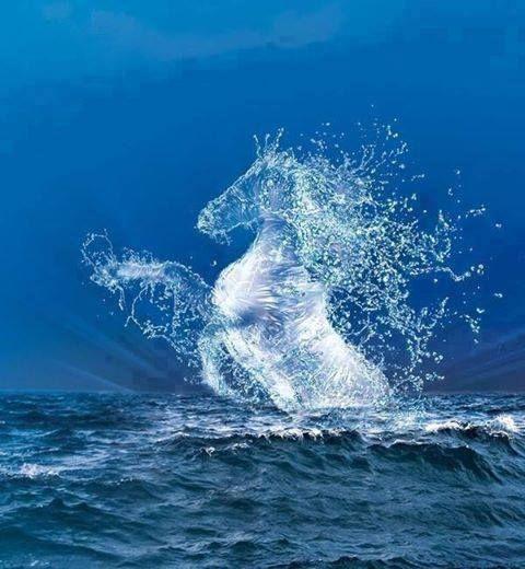 horse water paintings   Water horse