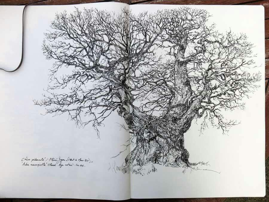 Yan Lessacher - tree