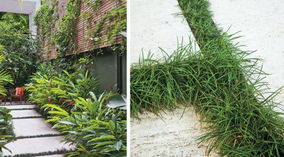 pequenos jardins com grama - Pesquisa Google