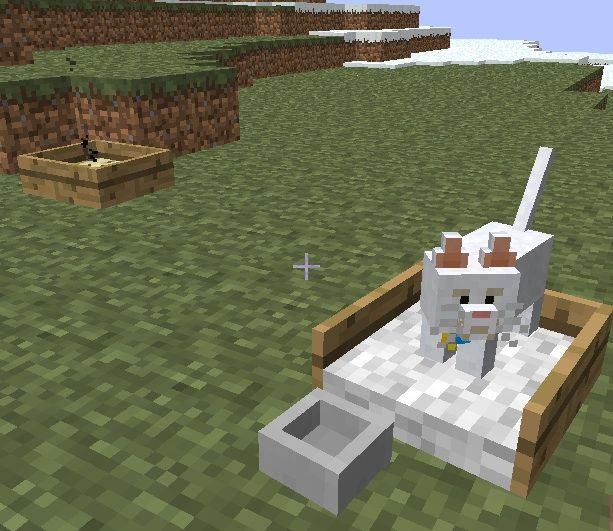 A cat bed in fancy mod in minecraft | MINECRAFT | Minecraft