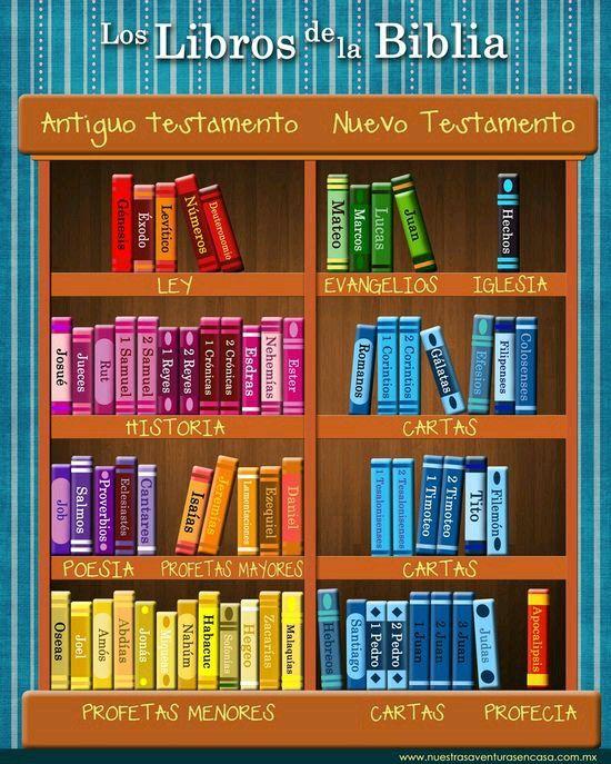 La biblioteca divina en un solo tomo la biblia libro sin for Partes de una biblioteca