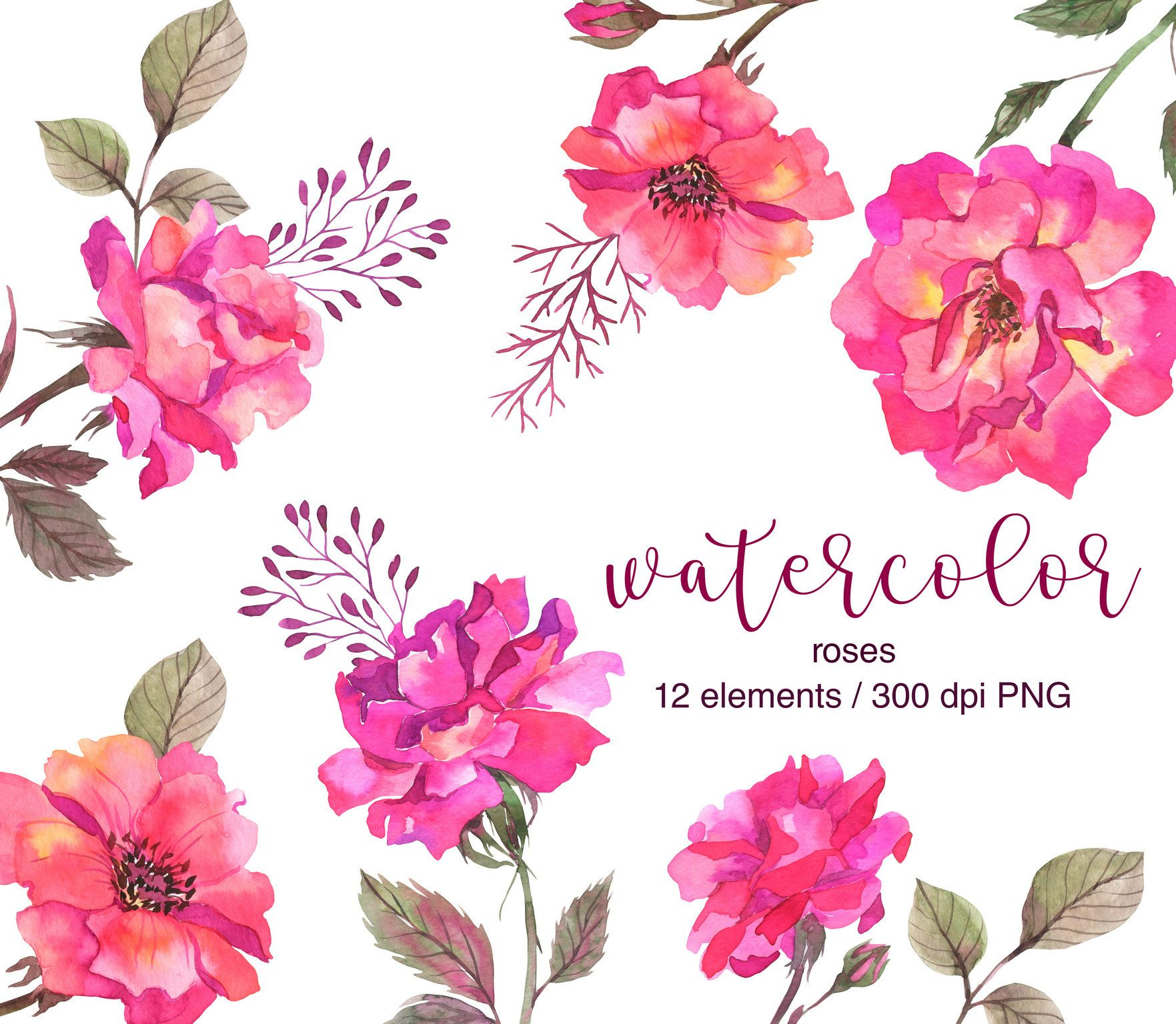 Watercolor Roses Clipart Wild Roses Clipart Roses Watercolor Clipart Watercolor Pink Roses Png Floral Clip Art Wedding Floral Design Clip Art Watercolor Rose Watercolor Flowers
