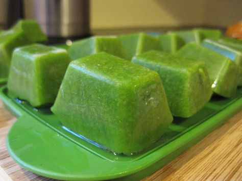 How Long is Frozen Baby Food Good for? & How Long is Frozen Baby Food Good for? | Babies Baby food storage ...