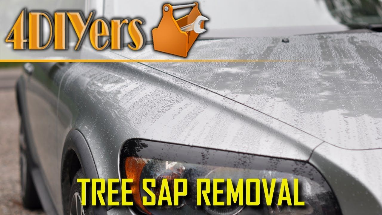 4 Ways On How To Remove Tree Sap From Your Vehicle Tree Sap Remove Tree Sap How To Remove