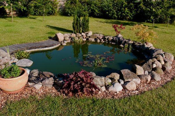 How To Make Your Pond Water Blue | Water Garden Advice in 2020 | Ponds  backyard, Pond landscaping, Small backyard ponds