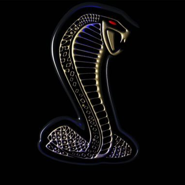 Las 10 Mejores Imagenes De Mustangs Mustang Cobra Mustang Logo Mustang Shelby Cobra