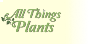 All Things Plants is the premier gardening website on the web with a huge database of plants, discussion forums, articles, gardening blogs and much more