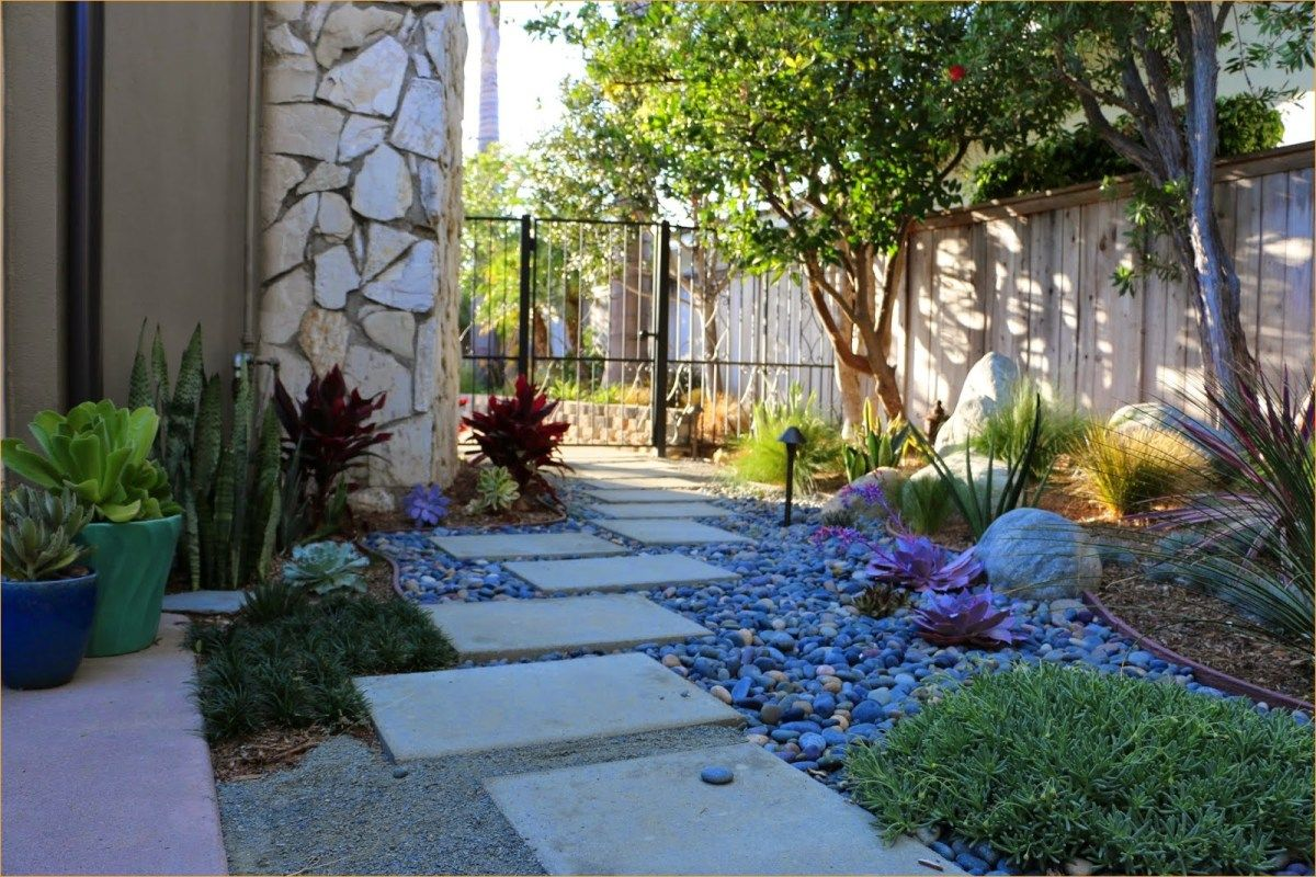 Drought Resistant Modern Landscape 9 Craft And Home Ideas Drought Tolerant Landscape Drought Resistant Landscaping Modern Landscaping