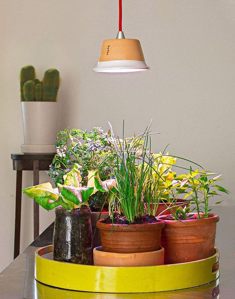 Urban Grow Lights Growing Plants Indoors Indoor Plant 400 x 300