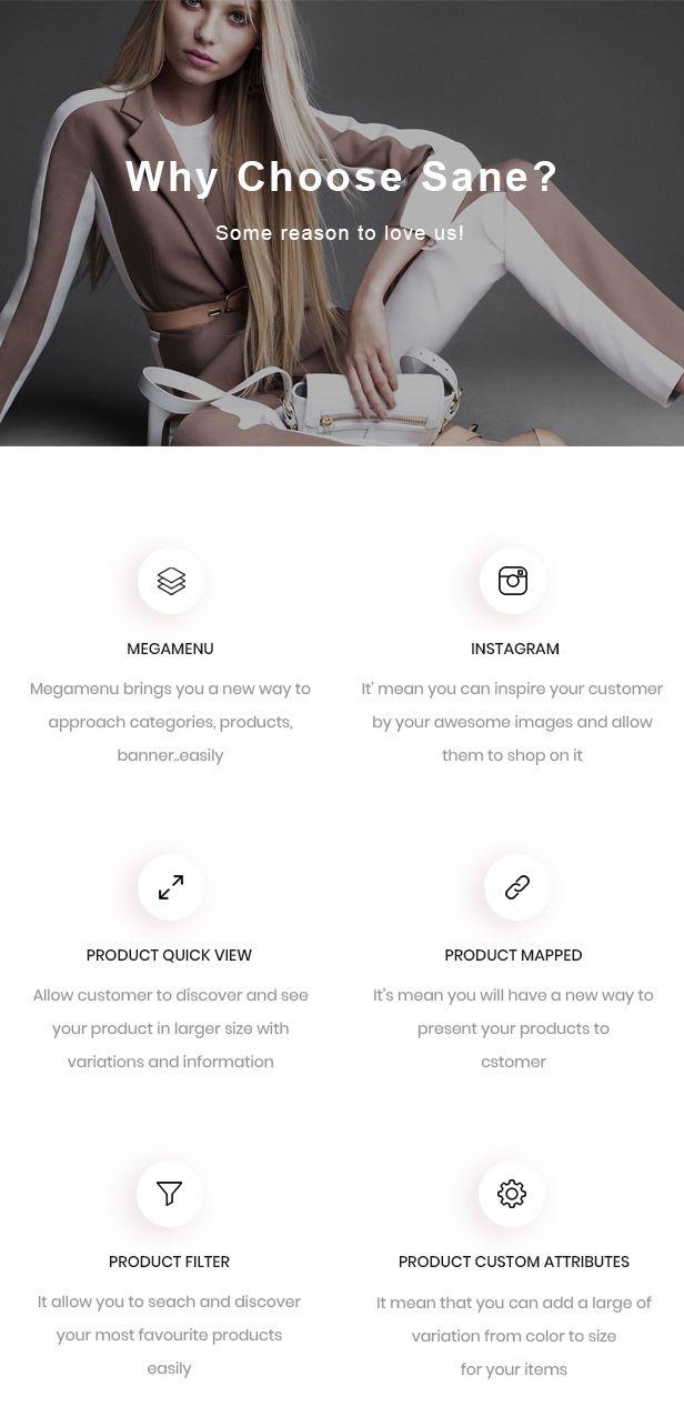 Ap Sane Multi-vendor Prestashop Theme- more feature ap sane