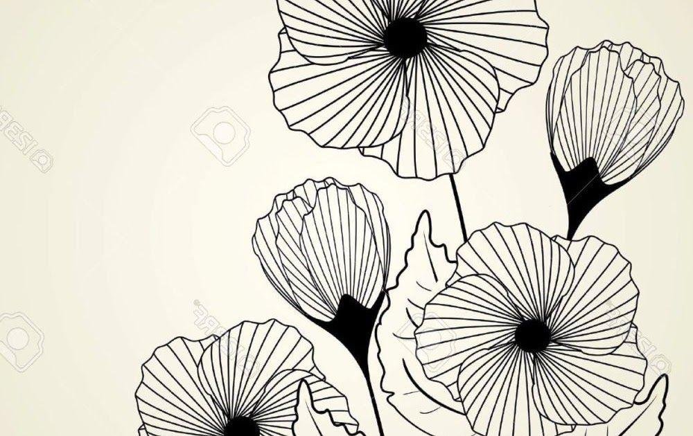 Gambar Bunga Cantik Draw Sketsa Gambar Bunga Nan Unik Cantik Gambar Flowers Zentangle Cara Gambar Bunga Mawar Bagaimana Men Gambar Bunga Bunga Cantik Bunga