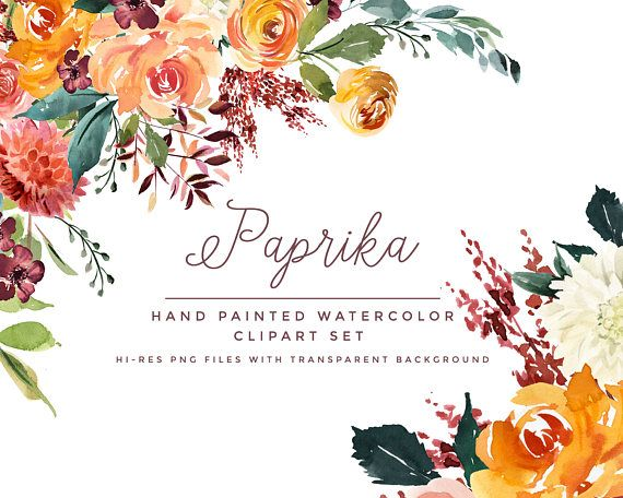 Watercolor Clipart Paprika. Hand Painted Watercolour Florals With Transparent Background. Clipart to download as png files with a transparent backgrounds.   INSTANT DOWNLOAD  You will be able to instantly download your set of clipart after you purchase.  IN THIS CLIPART SET YOU WILL RECEIVE...  21 individual floral/leaf images in transparent PNG format (see shop image 4).  4x floral arrangement images (see shop image 3) in transparent PNG format.  BONUS 2 x shop images. You will receive ...