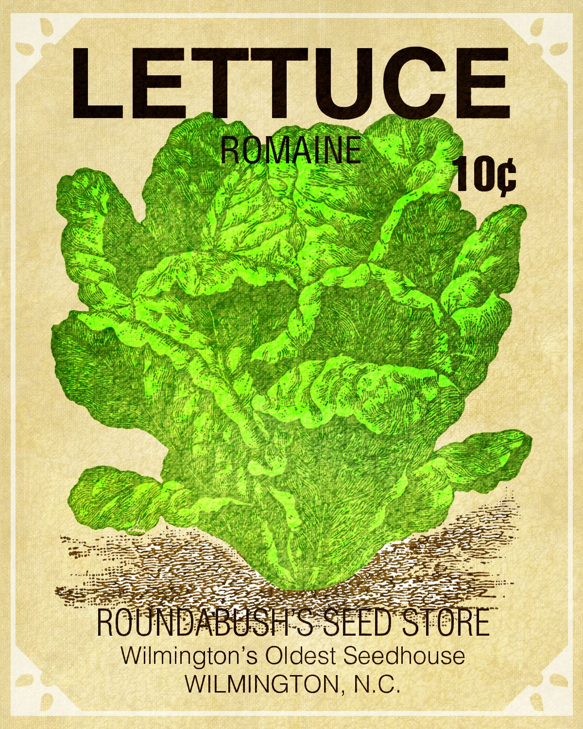 Roudabush Seed Nc Vegetable Seeds Packets Lettuce Seeds