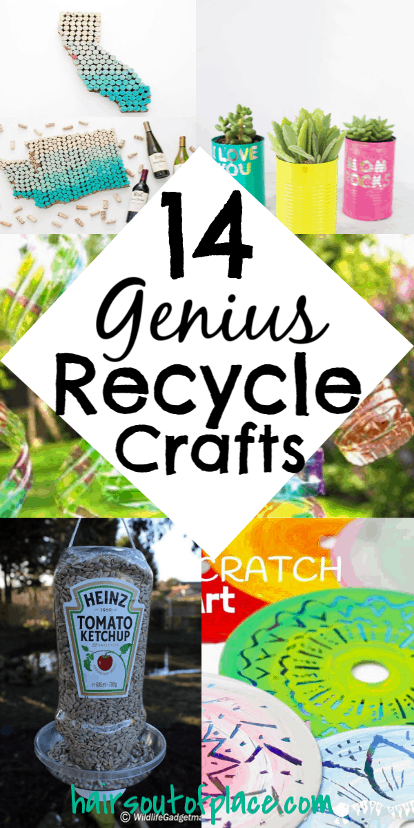 14 Fun and Easy Recycle Art Projects - Hairs Out of Place