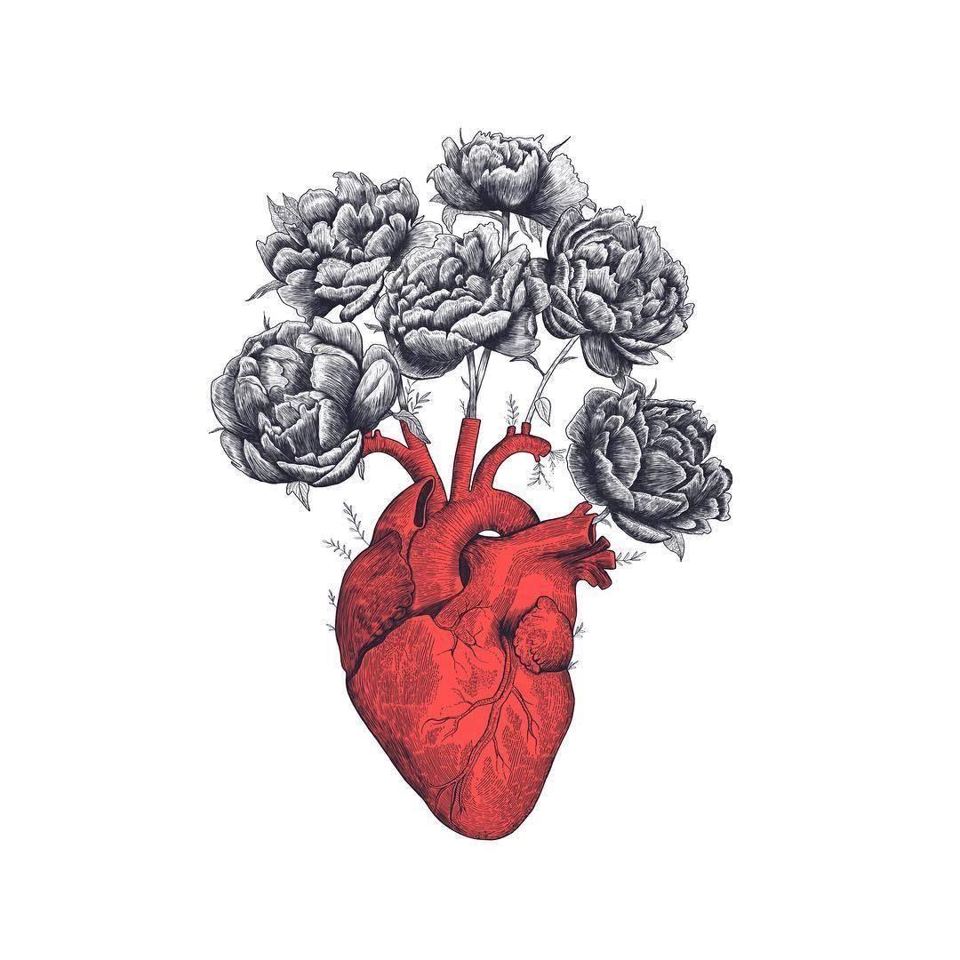 Pin von Dina Kasbary auf tattoo | Pinterest | Anatomie des menschen ...