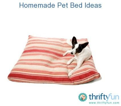 This is a guide about homemade pet beds. Buying a pet bed can be expensive and sometimes frustrating when looking for a specific size or type.