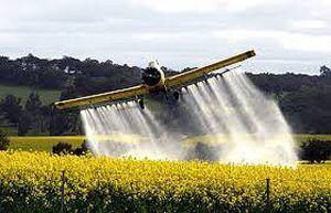 Villaguay será sede del debate por la ley de agroquímicos | https://t.co/NU4tHsdw6l  https://t.co/wOoekggqzC https://t.co/qR7Bu8qLMQ