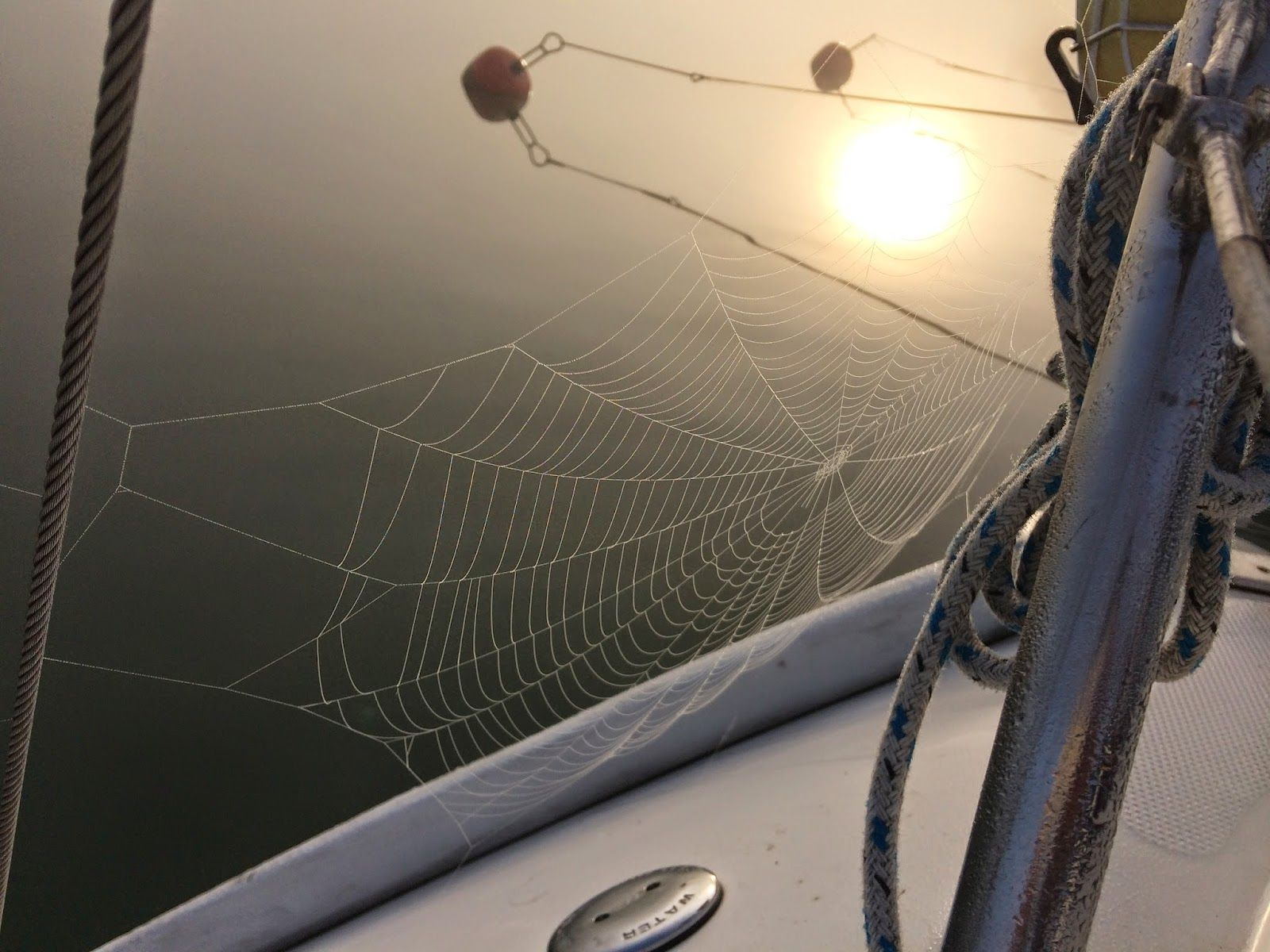Aamusumu ja yöllinen hämähäkin verkko. http://www.sy-solsidan.blogspot.fi/