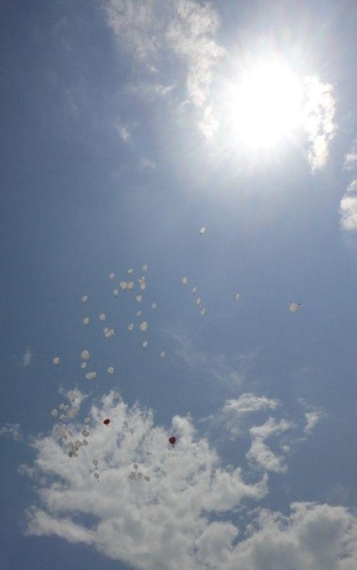 Vuestros mejores deseos a volar!! y entre ellos, los corazones del novio (rojo) y de la novia (rosa)...