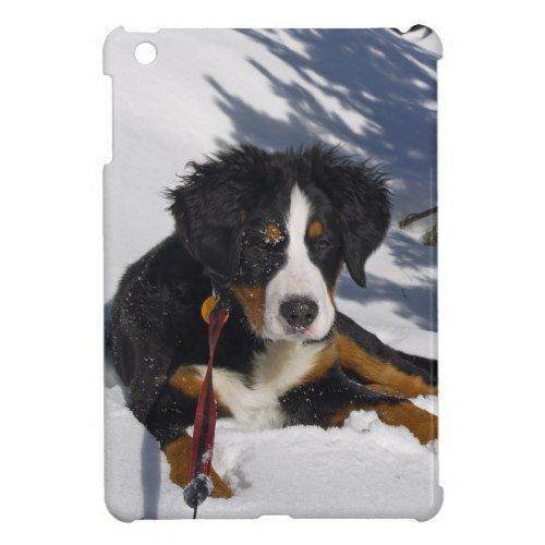 Bernese Mountain Dog In Snow Ipad Mini Case Zazzle Com Snow