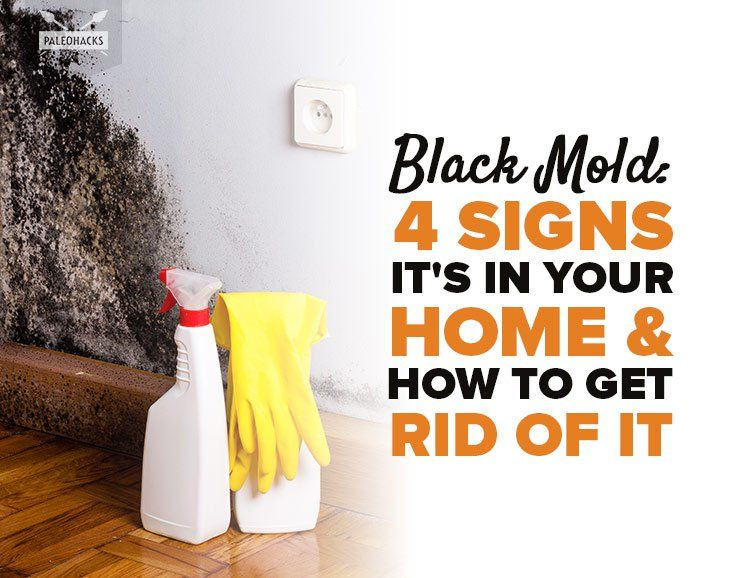 4 Signs Your Home Has Toxic Black Mold How To Get Rid Of It Clean Black Mold Toxic Black Mold Mold Remover