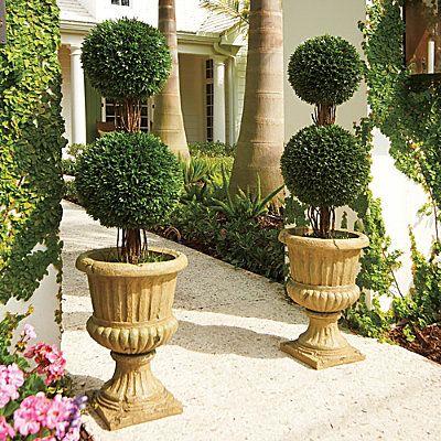 Outstanding Podocarpus Double Ball Topiary Artificial Topiary Door Handles Collection Olytizonderlifede